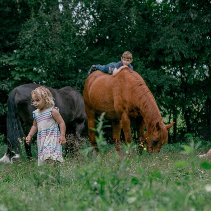 PAARDENPLEZIER   omgaan met paarden